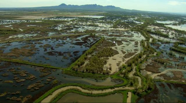 Delta Island Flooding