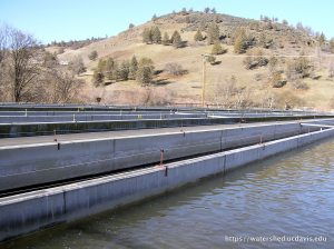 The Iron Gate Dam on the Klamath River. Photo by Rebecca M. Quiñones, 2008