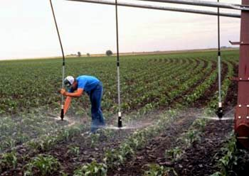 """Dropped nozzles"" hover right above the canopy of crops, reducing water lost to evaporation and drift. Source: USDA, Natural Resources Conservation Service"