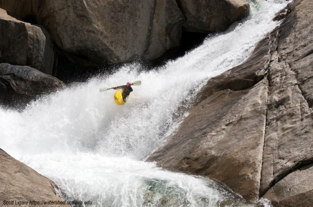 Champion kayaker Katie Scott on Sierra's Cherry Creek. Photo by Scott Ligare