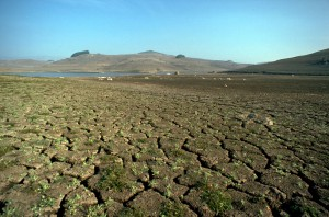 Folsom Lake in 1976, a drought year. Source: California Department of Water Resources