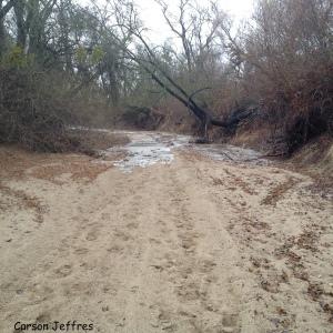 Consumnes River south of Sacramento, Feb. 9, 2014. Photo by Carson Jeffres