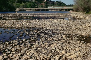 Lower American River, 1977 drought