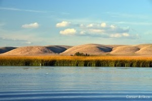 Suisun Marsh. Photo by Carson Jeffres, UC Davis