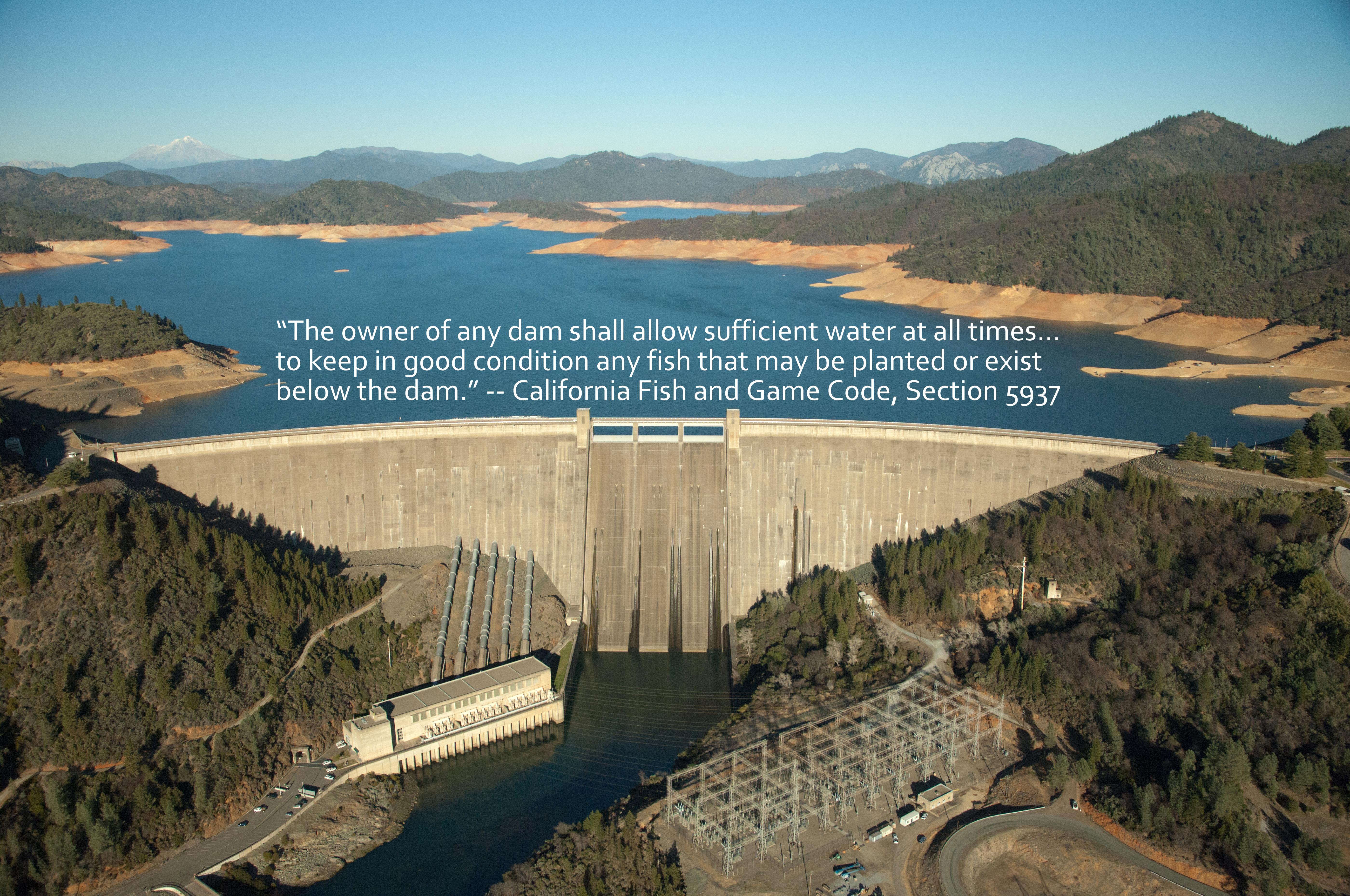 flagging problem dams for fish survival california waterblog