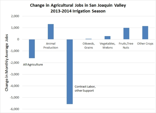 The San Joaquin Valley saw the largest farm job losses in California during the 2013-2014 irrigation seasons, with modest gains in some areas. A similar trend occurred in the South Coast. The Sacramento Valley saw job increases in the hundreds – far less than would have been expected with no drought. The Central Coast, which is less affected by drought, had increases in all job categories. Source: California Employment Development Department