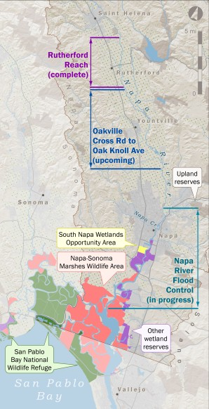 With the completion of ongoing projects, tens of thousands of acres and about 60 percent of the Napa River's length will have been rejuvenated with improved habitat, intact geomorphic function and reconnected floodplains. Map by Amber Manfree/UC Davis