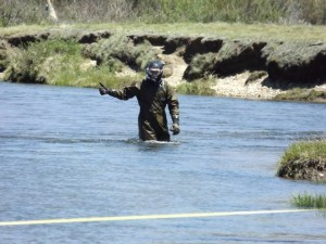 Conducting a snorkel survey in the Tuolumne River