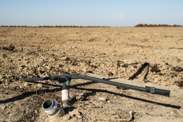 KG_central_valley_drought_31315.png